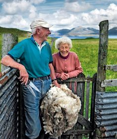 """'Harris Tweed:  From the Land Comes the Cloth'  """"Shearing time at a fank is particularly busy and noisy......''   Hebridean Smiles – Kenny Macdonald and Morag Mackinnon, Luskentyre Fank, Isle of Harris"""