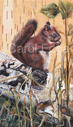 Squirrel (Acrylic Painting on Birch Bark)