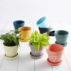 8 colors! Crafted from terracotta with a chalkboard finish, these planters make it simple to label your plants, so you'll never forget which herb is which. Time to replant? Just erase and start over.