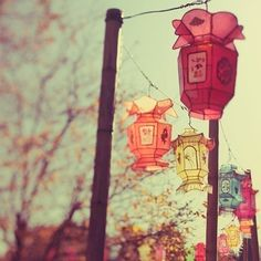 Home › EyePoetryPhotography Paper Chinese Lanterns in Pastel Colors, Chinese new year, Photograph, Fine Art Photography - 1000 Lanter Chinoiserie, Eyes Poetry, Style Asiatique, Decoration Inspiration, Garden Inspiration, Color Inspiration, Garden Ideas, Autumn Inspiration, Decor Ideas