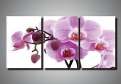 Amazon.com: huge Modern abstract 3 panel canvas art group painting home decoration: Home & Kitchen