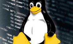 Așa cum am menționat de mai multe ori în ghidurile Linux, aproape totul în acest sistem de operare este un fișier, iar deseori acestea sunt fișiere text. De exemplu, toate fișierele de configurare sunt fișiere text. Pentru a reconfigura o aplicație în Linux, deschidem pur și simplu fișierul de configurare, schimbăm datele din fișierul text, salvăm din nou, apoi resetăm aplicația, iar reconfigurația noastră este aplicată.