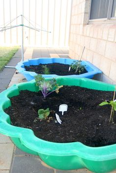 good idea if you don't have the yard to plant a garden