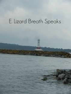 http://www.elizardbreathspeaks.com/2014/11/round-island-passage-light-house.html