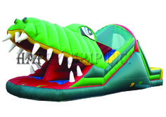 Fast Growing Market: Inflatable  Bounce Houses:  Playing House  with a ...