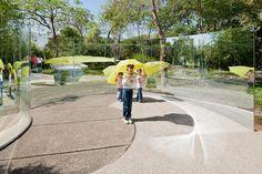 <p>Dan Graham's <em>Concave/Convex</em>, <em>Hedge Folly</em> (2005) at Jardín Botánico de Culiacán.</p>
