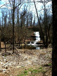Take a hike! Great Northwest Arkansas trails for parents and kids of all ages to explore.