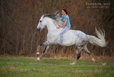 .i tried riding r mare bare back but she would do this side step thing and dump me on ground every time ha ha ha