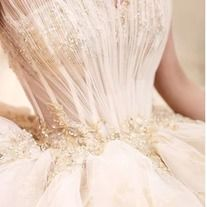 Champagne color wedding dress sen department wedding dress super fairy fantasy simple condole belt wipe the chest to drag the tail wedding dress Champagne Wedding Colors, Champagne Color, Off Shoulder Wedding Dress, Lace Evening Dresses, Colored Wedding Dresses, Indie Brands, Elegant, Classy, Champagne Colour
