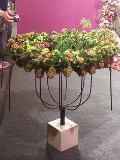 Artist Pirjo Koppi, Finland :: Fleurop-Interflora World Cup – Berlin 2015