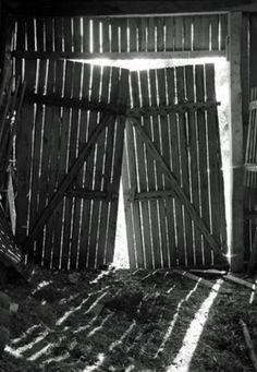 Fallen & Leaning Old Barn Doors