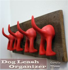 Dog tail hooks use to organize leashes, coats, backpacks by the door