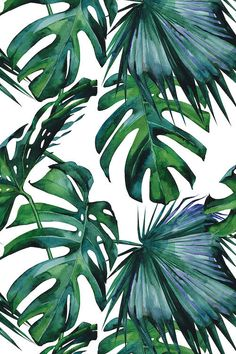 'Classic Green Tropical Monstera Leaf Jungle Palm Pattern' Tapestry by SimpleLuxe Green Framed Art, Green Art, Framed Art Prints, Canvas Prints, Plante Monstera, Green Duvet Covers, Plant Leaves, Palm Tree Leaves, Wall Art