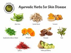 #Ayurvedic #Herbs for #SkinDisease Two major causes of disease in #Ayurveda are improper #diet and #lifestyle that a person follows consciously or unconsciously. Following a diet or lifestyle that is against the #season or #Prakriti (nature) of a person, creates an imbalance in the body's #energies, thus contaminating the tissues of the body to produce a skin disease. For more details: Visit: www.chithrakoota.com Contact: 9480011578 #Mangalore #HerbalMedicine #Treatment #Danavanthri