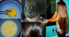 A beleza dos cabelos é um dos assuntos preferidos das mulheres. Quem não deseja ter os fios longos e fortes? Para isso, é necessário uma dieta equilibrada, uma boa genética e um sistema imunológico fortalecido.