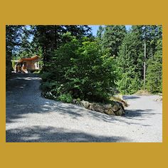 Moon Dance Perch is a custom built modern cabin accommodation offering privacy, full amenities, and fully accessible for the handicapped. Queen Size Sofa Bed, Moon Dance, Roof Lines, Back Deck, Tree Tops, In The Tree, Open Concept, Vacation Rentals, Country Roads