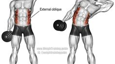Awesome exercise examples for all muscle groups with pictures!