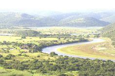 Kariega Game Reserve - Google Search