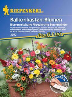 Balkonkastenblumen Sonnenkinder jetzt günstig in Ihrem MEIN SCHÖNER GARTEN - Gartencenter schnell und bequem online bestellen.
