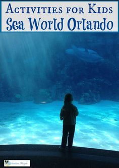 Kids Activities at Sea World Orlando http://vacationmaybe.com/kids-activities-you-never-knew-you-could-do-at-sea-world-orlando/ #treaveltips #vacation #travel @vacationmaybe