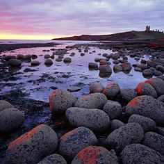The iconic ruin of Dunstanburgh Castle occupies a commanding position, making it one of our #specialplaces to take in spectacular views of the #Northumberland coastline. Thanks to Joe Cornish and NTImages for this atmospheric photo #nationaltrust #Padgram