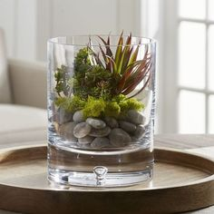 Add a touch of green to your space with silk flowers and artificial plants from Crate and Barrel. Browse life-like flowers, branches, succulents and more. Hurricane Candle Holders, Tealight Candle Holders, Vases Decor, Plant Decor, Centerpieces, Succulents Garden, Planting Flowers, Artificial Succulents, Faux Succulents
