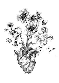 alfredbasha heart HEART alfredbashaYou can find Heart drawing and more on our website Art Drawings Sketches, Tattoo Drawings, Heart Drawings, Herz Tattoo, Anatomy Art, Heart Anatomy Drawing, Heart Pencil Drawing, Anatomy Tattoo, Kunst Tattoos