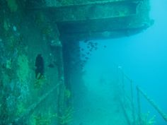 A mighty wreck to dive, full of fish life and colourful anenomes