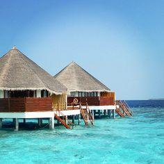 Maldives Luxury Resorts - Adhaaran Select Meedhupparu  #bmrtg #RT2GAIN #Maldives #meedhupparu #AsiaTravel #WorldTravelGuide #马尔代夫 #SBN2RT #warrenjc #sunnysideoflife #maldivity #travel #traveling #vacation #dive #surfing #adventureculture #instagood #india #holiday #lagoon #beach #instapassport #instatraveling #mytravelgram #travelgram #igtravel #CrystalClearWater #LonelyPlant #adventure