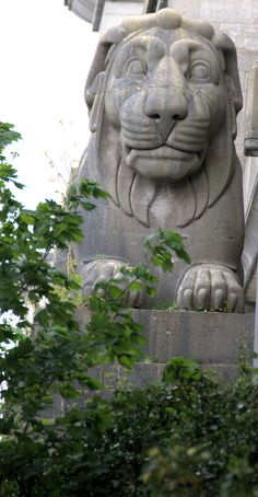 One of the four magnificent stone Lions on the Britannia Bridge that are sadly in quite an obscure location these days...