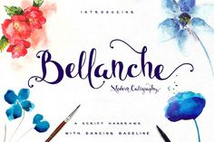 Bellanche Script by Awakening Studios on @creativemarket
