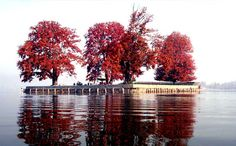 Kashmir vacation packages – we provides warm and pleasant Kashmir vacation packages at supreme price. For online booking contact us at www.kashmir.co .