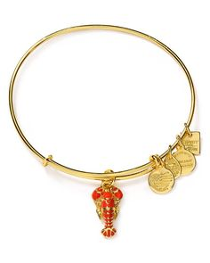 Alex and Ani designs a do-good bracelet adorned with a colorful lobster charm. With the help of its customers, Alex and Ani aims to raise a minimum of $2 Mm for Unicef by February 2018. Alex and Ani w