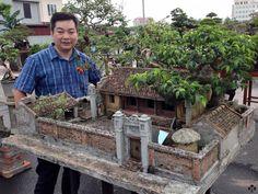 Vietnamese miniature landscape – Bonsai Empire A Zen garden with gravel surfa… - Modern Ficus Bonsai, Bonsai Plants, Bonsai Garden, Bonsai Trees, Jardin Zen Miniature, Miniature Terrarium, Zen Garden Design, Landscape Design, Mini Zen Garden