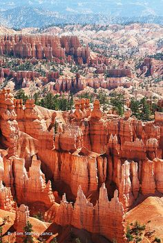 Bryce Canyon, Utah  ~ so impressively gorgeous. we had a chance to take a guided horseback ride here (a bit scary for a novice because it was a bit steep with hairpin turns on the trail)