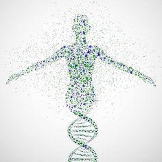 """Sigue circulando """"HALLAN LA CAUSA DE LA #FIBROMIALGIA .. POR FAVOR, COMPARTA ESTA INFORMACIÓN"""". Lo cierto es que la información (que se ha publicado con el mismo titular en diferentes páginas) tiene sus peros (el mayor de ellos que la causa de la #fibromialgia sigue sin conocerse). Os dejo ¿Es la fibromialgia genética? #160  #160 http://domandoallobo.blogspot.com.es/2016/02/160-la-fibromialgia-es-genetica.html"""