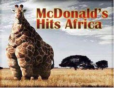 poor giraffe, what did that giraffe ever do to McDonald's?