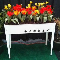 Herstera Urban Garden Metal Grow Table - Available in 5 Colors | Eartheasy.com