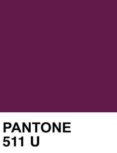 Pantone 511 U. #pantone #color