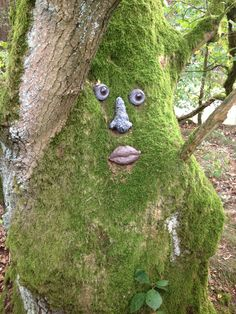 Spirit of the forest. We found it, underneath one of his eyes was the coordinate of the cachebox.
