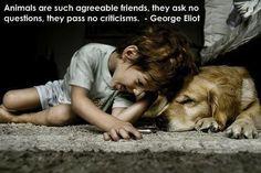 Every child needs a dog.  www.prosperityvault.com http://www.wordsonimages.com/pics/81777-o.jpg