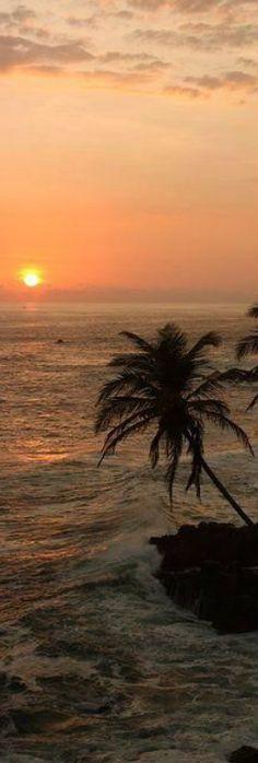 Sunset at the beach.Sri Lanka