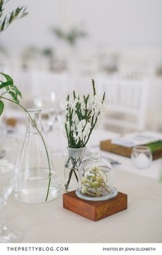 Natural Nuptials: A Celebration of Light