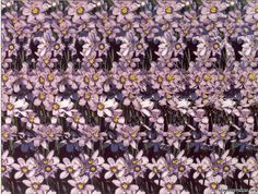 http://stereogrammes.org/d/911-3/magic+eye+flower.jpg