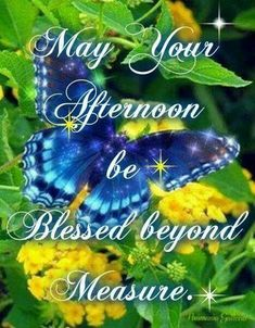Afternoon Blessed Beyond Measure good afternoon good afternoon quotes afternoon quotes afternoon images afternoon image quotes Good Afternoon Quotes, Good Day Quotes, Morning Inspirational Quotes, Good Morning Messages, Good Morning Quotes, Afternoon Messages, Inspirational Scriptures, Bible Verses, Motivational Quotes