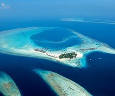 5 of the best house reefs in the Maldives - Constance Moofushi