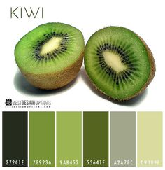 kiwi-color-palettes If you need a muted green palette, this color scheme inspired by kiwifruit with its brown skin, bright green fruit and black seeds, could help you achieve that look easily.