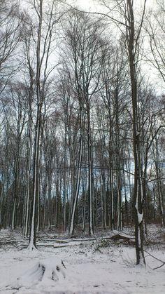 Vertical snow
