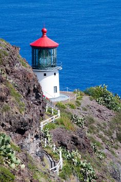 Been there. Hiked that. Makapu'u Point Lighthouse, Oahu, Hawaii. Fun hike! Bring good shoes, it's mostly on paved road up the side of the mountain.