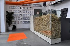 Concrete look wooden desk with hay inside behind the glass. Placed at creative factory Rotterdam. Design by AtelierFloor.